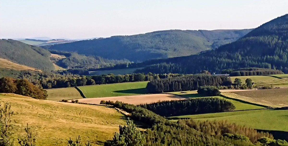 The Cadden valley near to Clovenfords